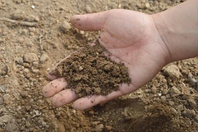 Voorbereiding grond voor plaatsen grasmatten